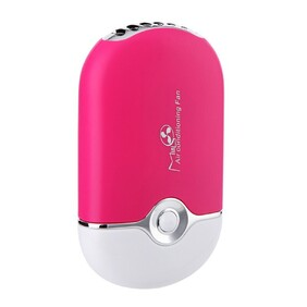 Mini Fan Bright Pink